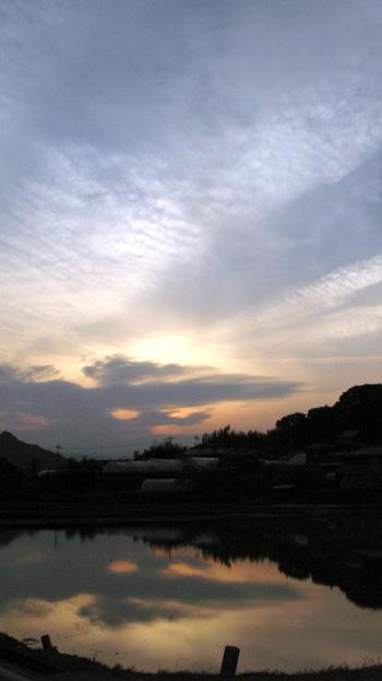 tanbo-yuuyake-22.05.18..jpg